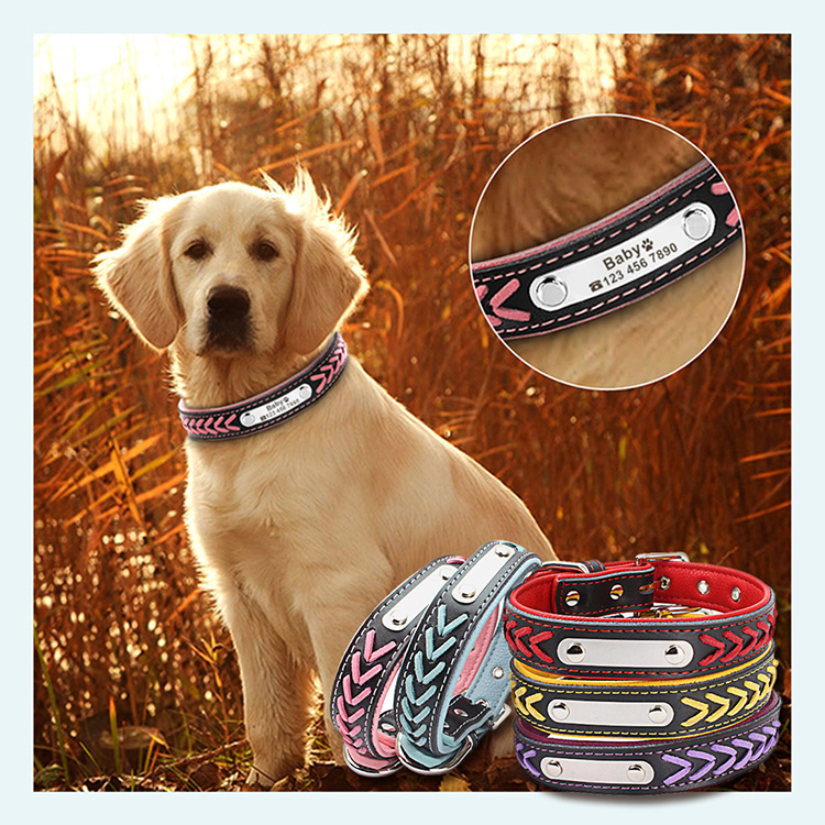 Braided Leather Engraved Dog Collars with Personalized Nameplate